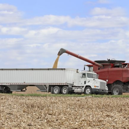 Grain Hauler Salary & Pay