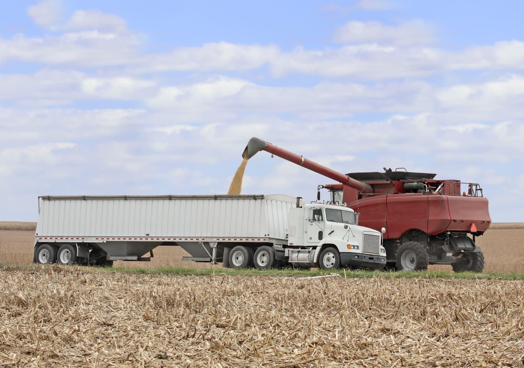 Grain Hauler Salary & Pay